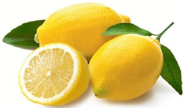 نهال لیمو ترش مکزیکی