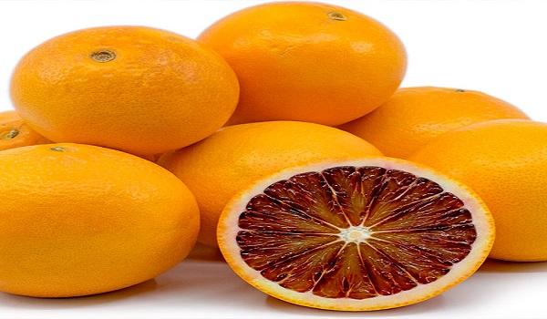 خرید نهال پرتقال خونی